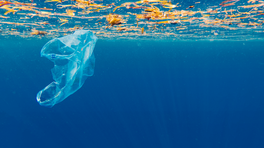 The Atlantic holds 10x the amount of plastic than previously thought
