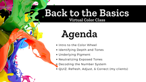 REPLAY- Back to the Basics Virtual Class