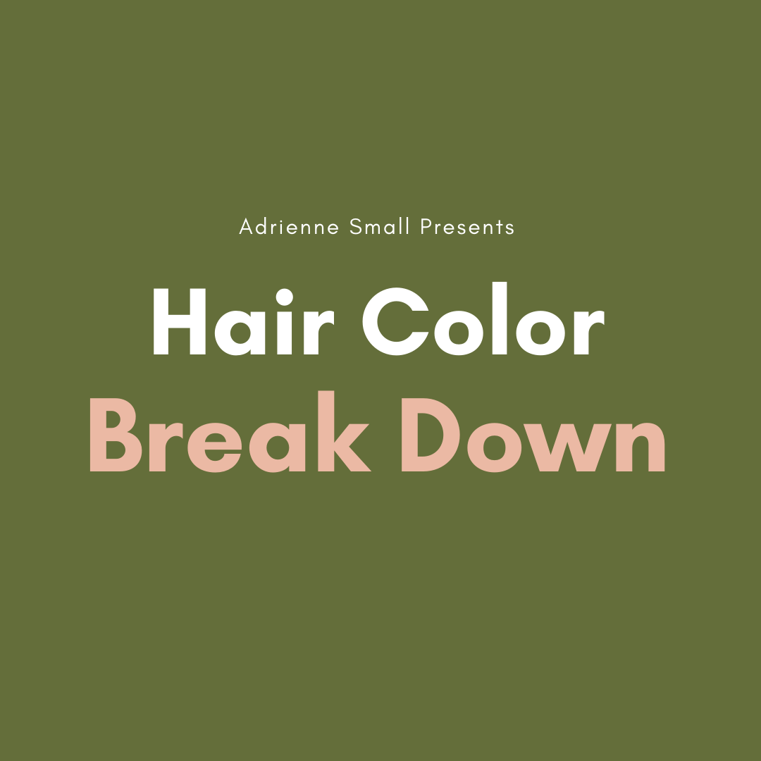 REPLAY- Hair Color Break Down Virtual Class