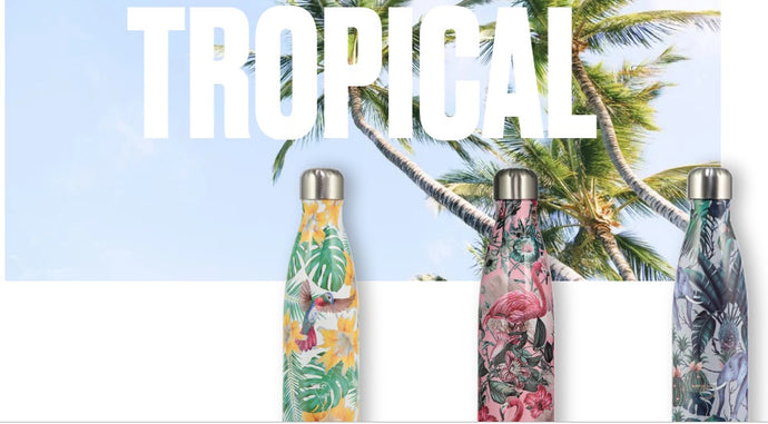CHILLY´S TROPICAL EDICION 500ml