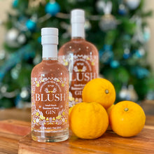 Load image into Gallery viewer, 250ml Blush Summer Citrus Gin
