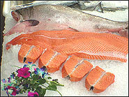 Yukon King Salmon