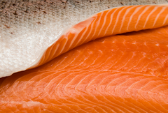 Copper River King Salmon Fillets