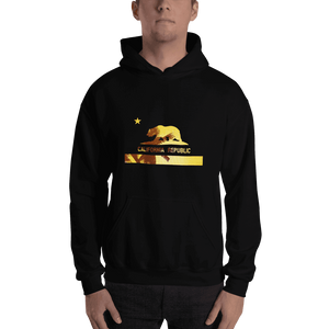 beach-bear-california-hooded-sweatshirt  -  Black / S  -  Hoodie  - SNS Outlet