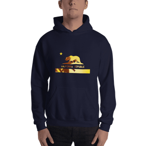 beach-bear-california-hooded-sweatshirt  -  Navy / S  -  Hoodie  - SNS Outlet