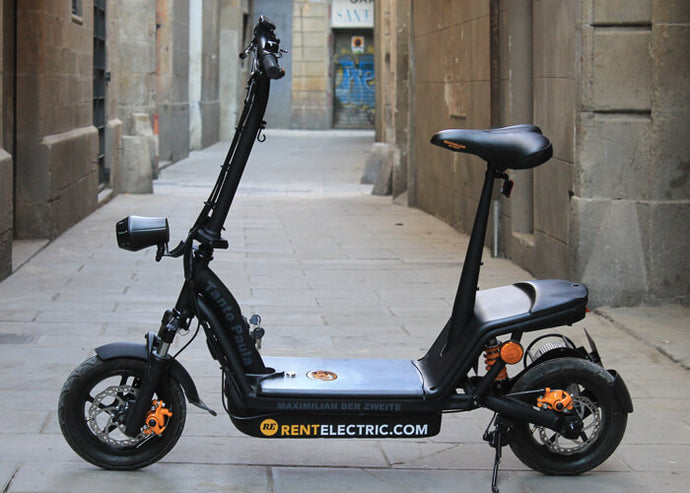 Electric Scooter TP