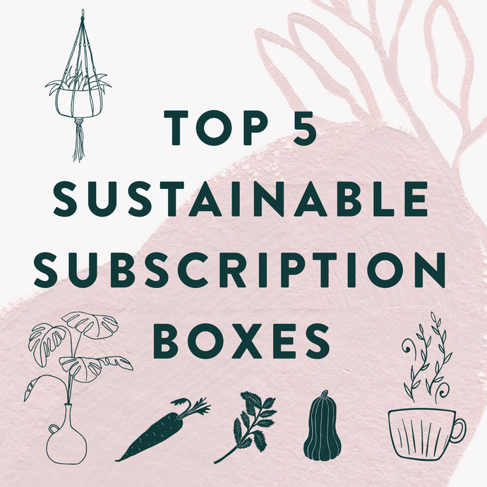Top 5 Sustainable Subscription Boxes For Greener Living