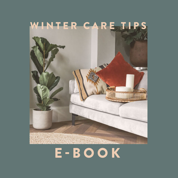Free Winter Care Tips eBook