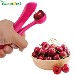 Fruit Core Seed Remover