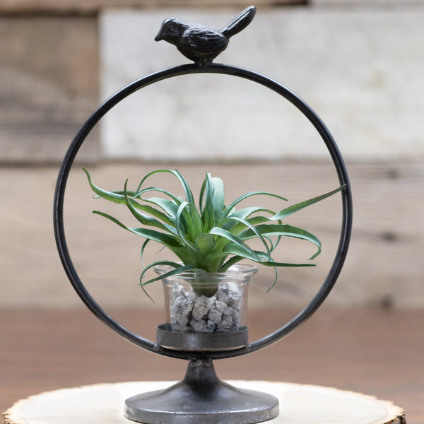 "9"" Bird Ring Candle Holder"