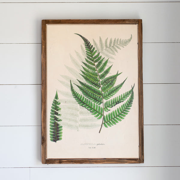 "Fern Botanical Print, Available in two styles (26.75"")"