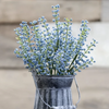 Astilbe bursting floral stem in blue
