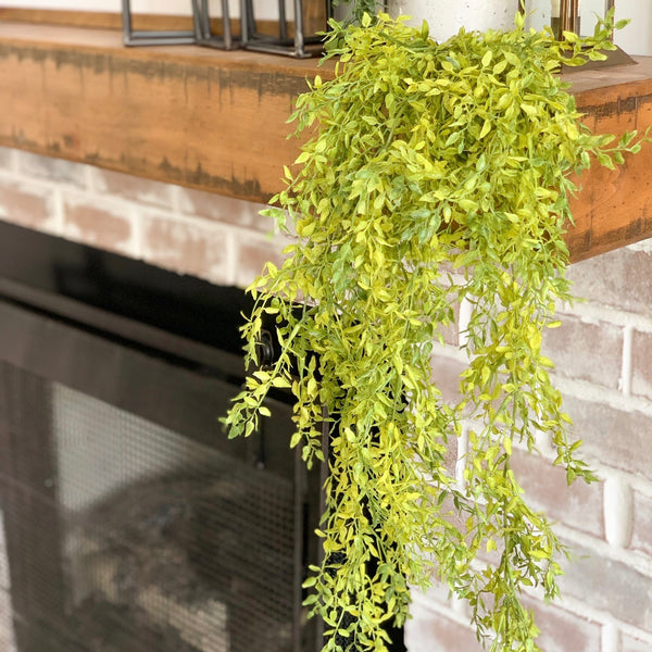 Hanging light green bush, 33""
