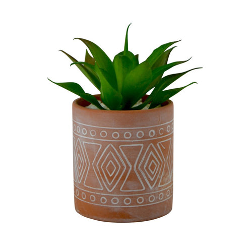 Navajo Pot with Suculant Plant