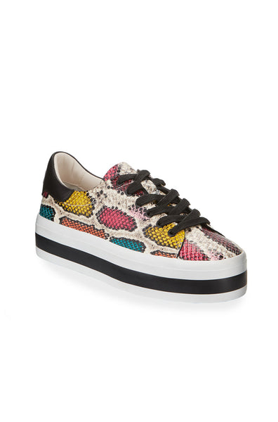 Ezra II Low Top Sneaker - Snake Multi