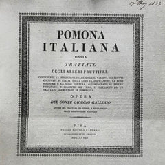 Pomona Italiana original book cover