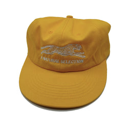 Brother Brother- Natural Selection Cap- Gold
