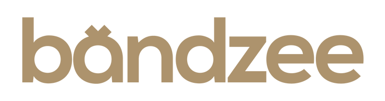 The Original Bandzee