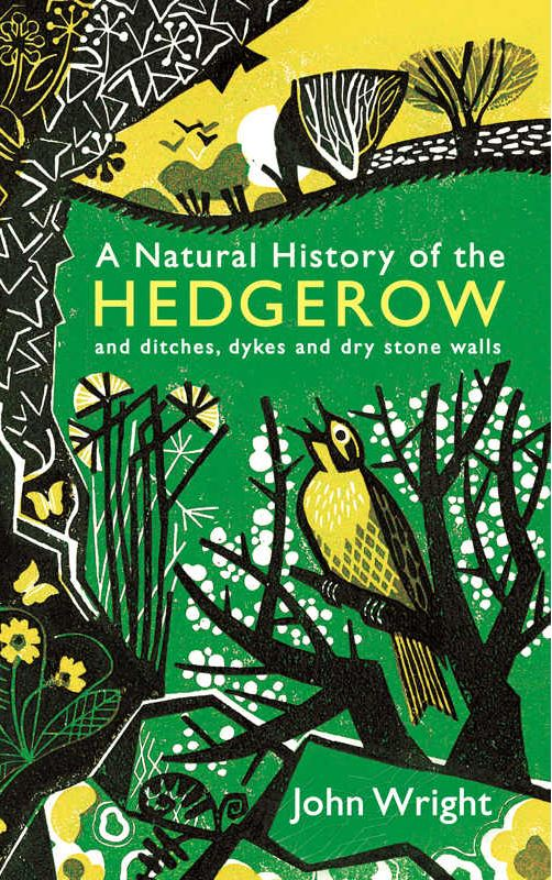 A Natural History of the Hedgerow: and ditches, dykes and dry stone walls