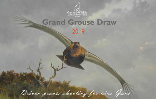 2019 Grand Grouse Draw Raffle Tickets (per 20)
