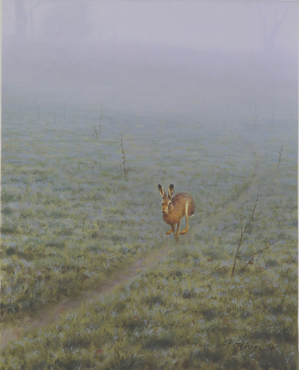 Hare on Track by Rodger McPhail - Pack of 10 Christmas Cards
