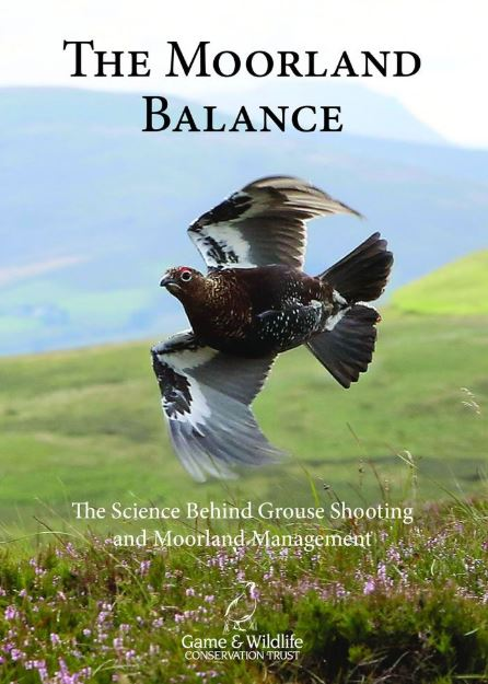 The Moorland Balance eBook