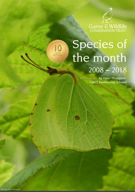 Species of the Month 2008-2018 eBook
