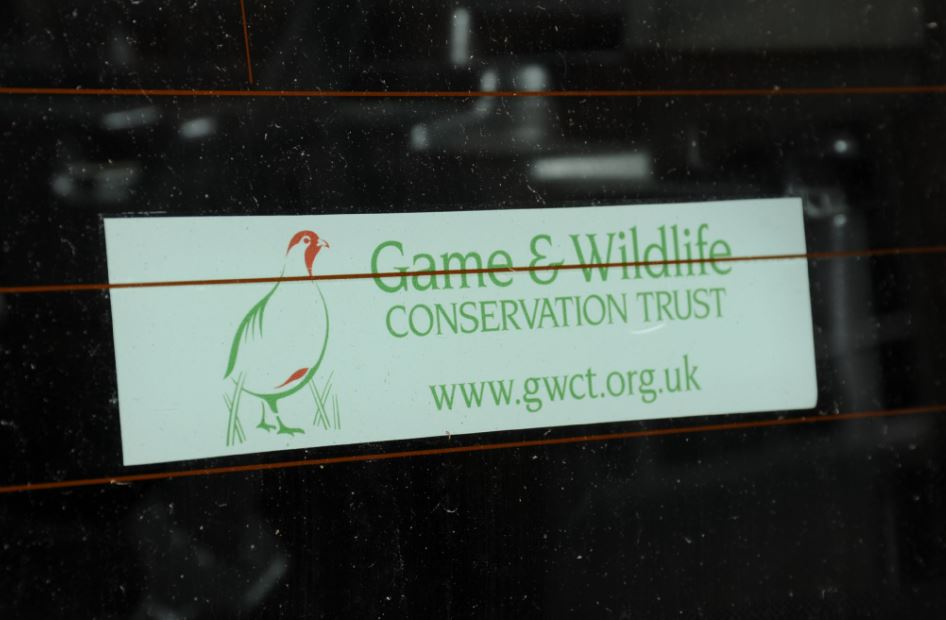 GWCT Car Sticker