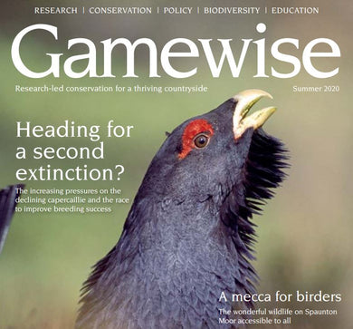 Gamewise Magazine - Summer 2020 - eBook