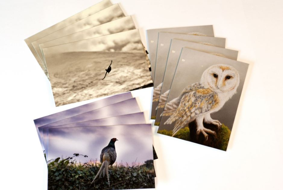 GWCT Notecards
