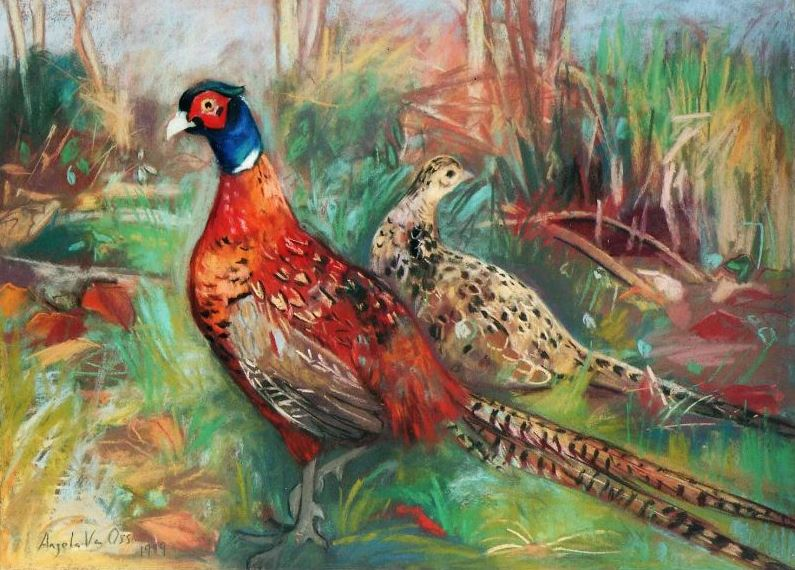 Pheasants in the Wood Greeting Cards