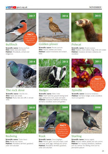 Species of the Month 2008-2018 e-book
