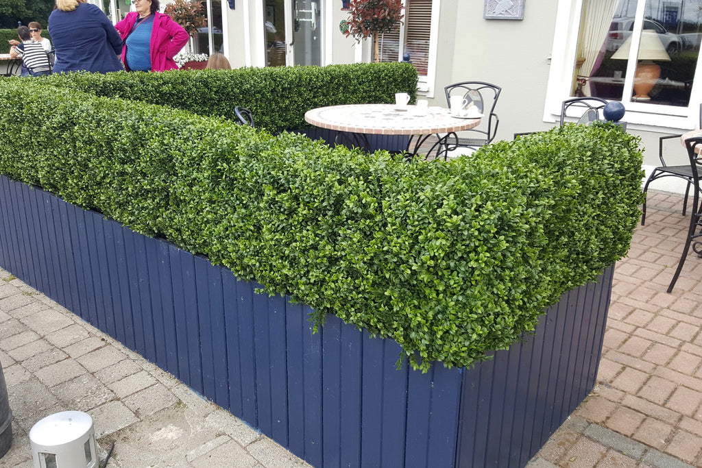 The Horse and Jockey Artificial Boxwood project - Trees Company