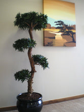 Load image into Gallery viewer, Bonsai Wood Tree