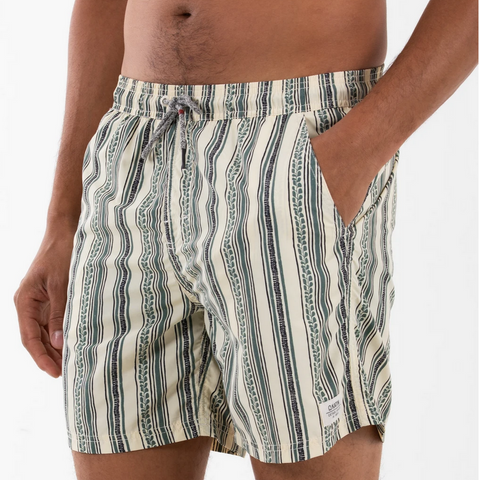Jack Stripe Volley, Swim Trunk