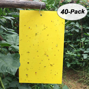Bug/Gnat Yellow Sticky Trap Pest Control