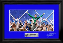 Load image into Gallery viewer, Official 2016/17 Goal Net Frame signed by David Forde
