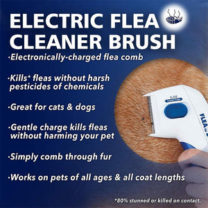 Electric Flea Cleaner Brush