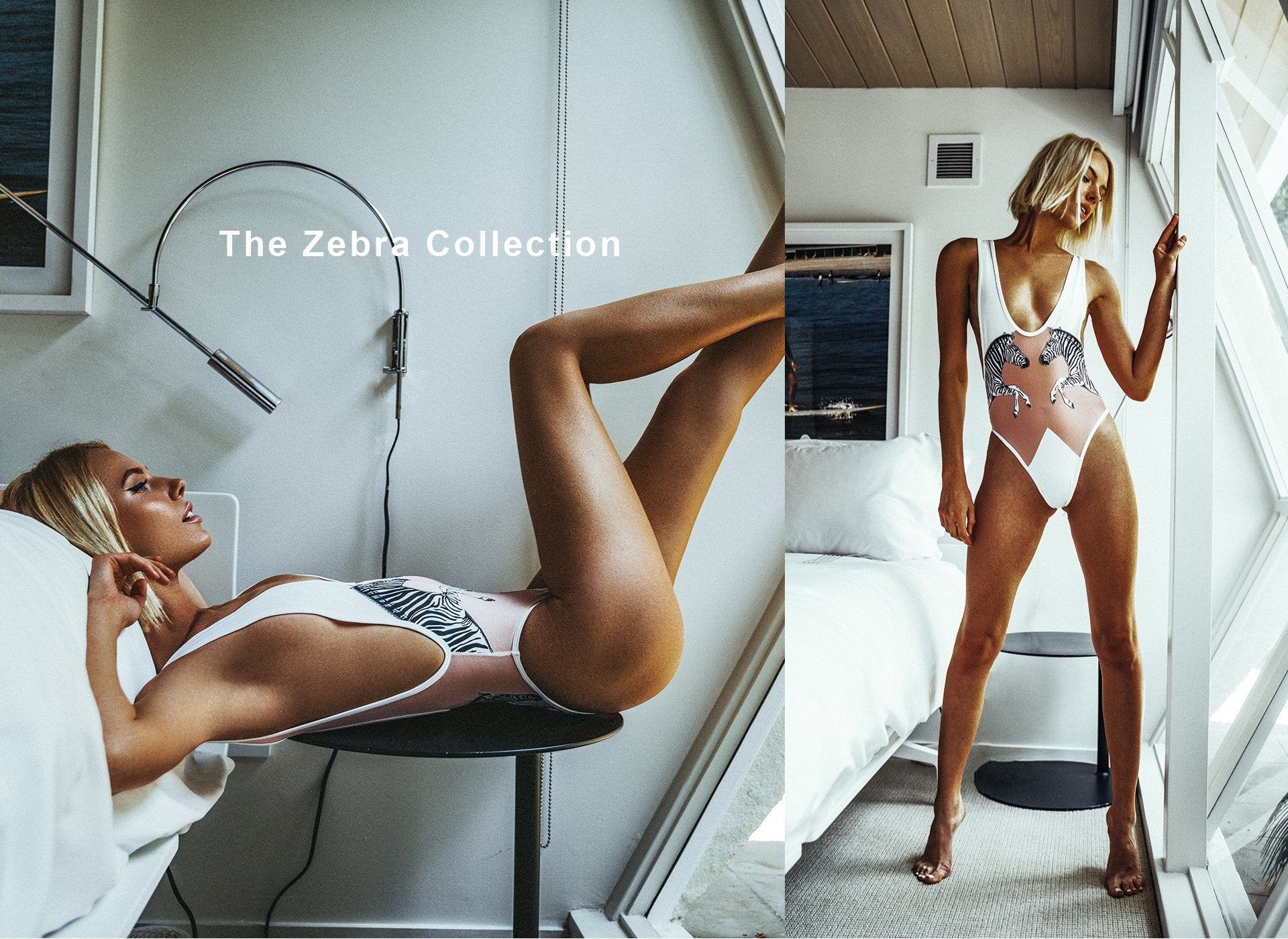 The Zebra Collection