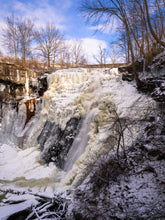 Load image into Gallery viewer, 'Frozen Brandywine'