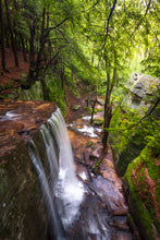 Load image into Gallery viewer, 'Hector Falls, Allegheny National Forest'