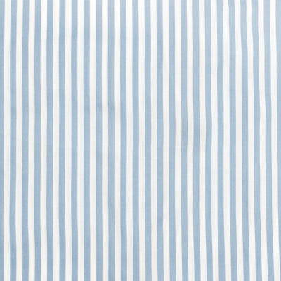 French Blue Striped Swatch