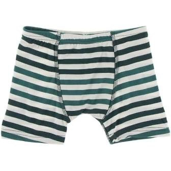 Boy's Boxer Briefs Underwear Wildlife Stripe