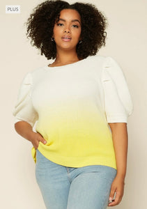 Plus Lifetime Knit Sweater Top
