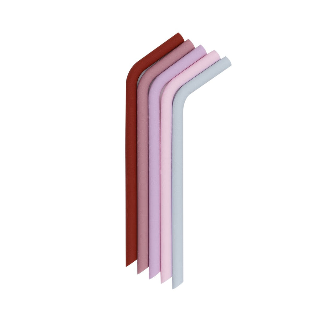We Might Be Tiny Set de 5 paie din silicon Bendie Straws - Earth & Blooms