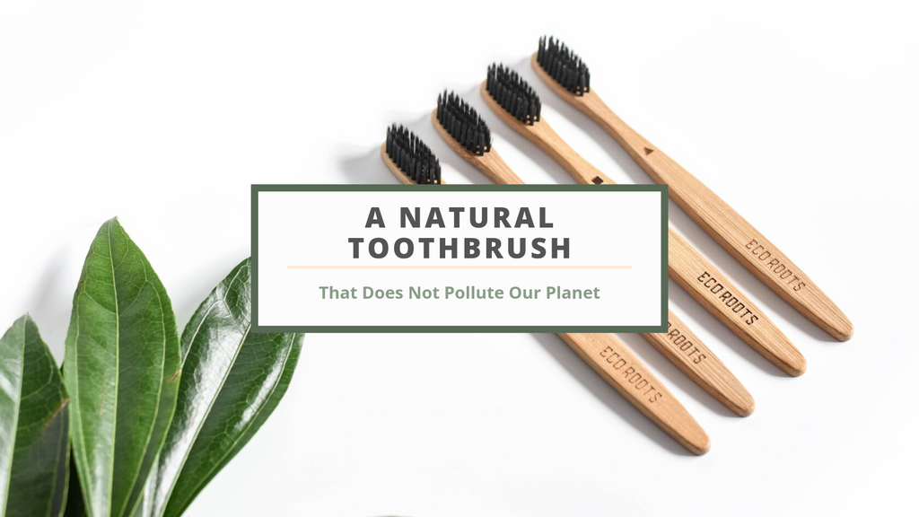 The Right Natural Toothbrush [For You & The Planet]