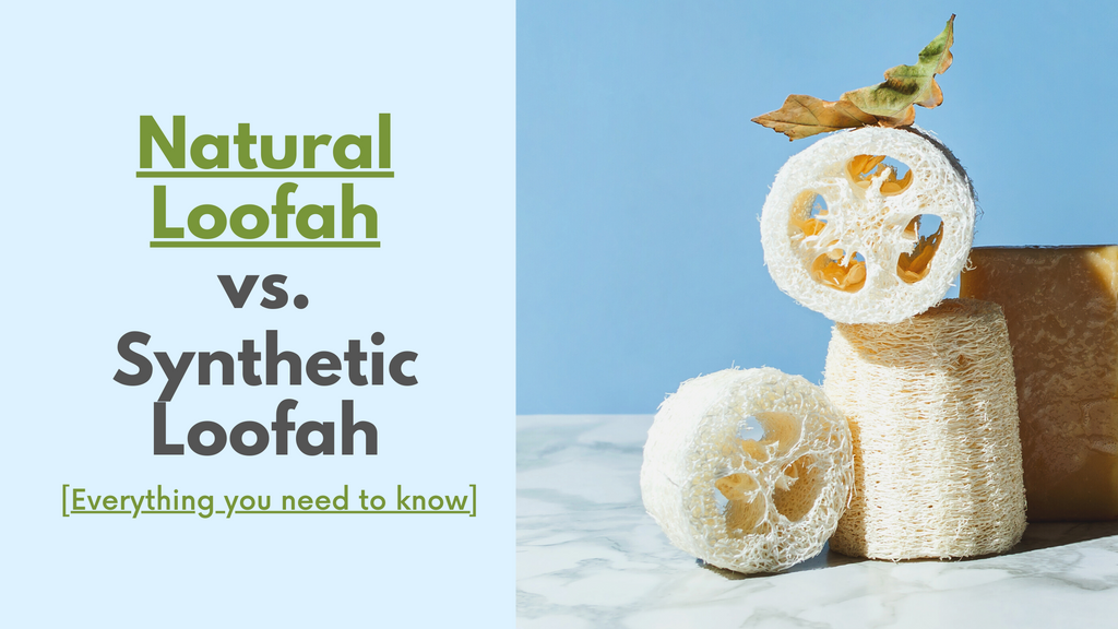 Natural Loofah vs. Synthetic Loofah [Everything you need to know]
