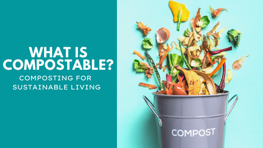 What is Compostable? [Composting for Sustainable Living]