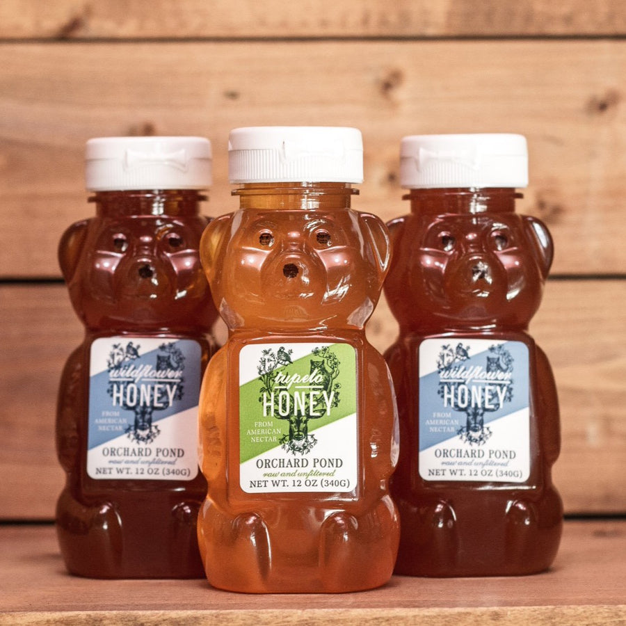 Harvested tupelo honey from Orchard Pond Organics in Tallahassee, FL.