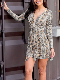 Serpentine Printed Lace Dress